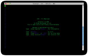 vim_screenshot_accueil
